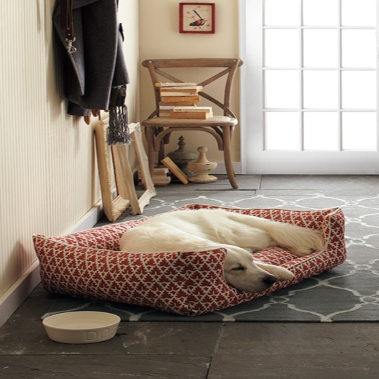 Peek Inside The Plush Pads Of The World's Most Privileged Pups ➤ http://CARLAASTON.com/designed/dog-home-design