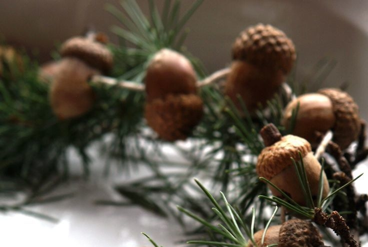 10 Must Have Rustic Chic Christmas Tree Decorations