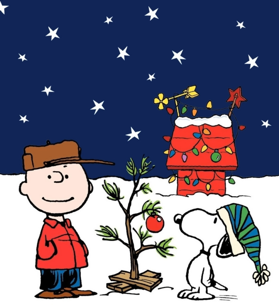 "With just a few well-chosen ornaments and a single strand of lights, a ""Charlie Brown"" Christmas tree can be made to stand proud!"