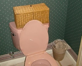 No More Pink Toilets!