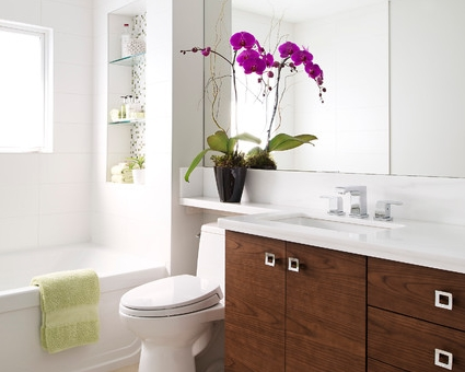 A toilet can help a small bathroom appear bigger yep for Small bathroom zen style