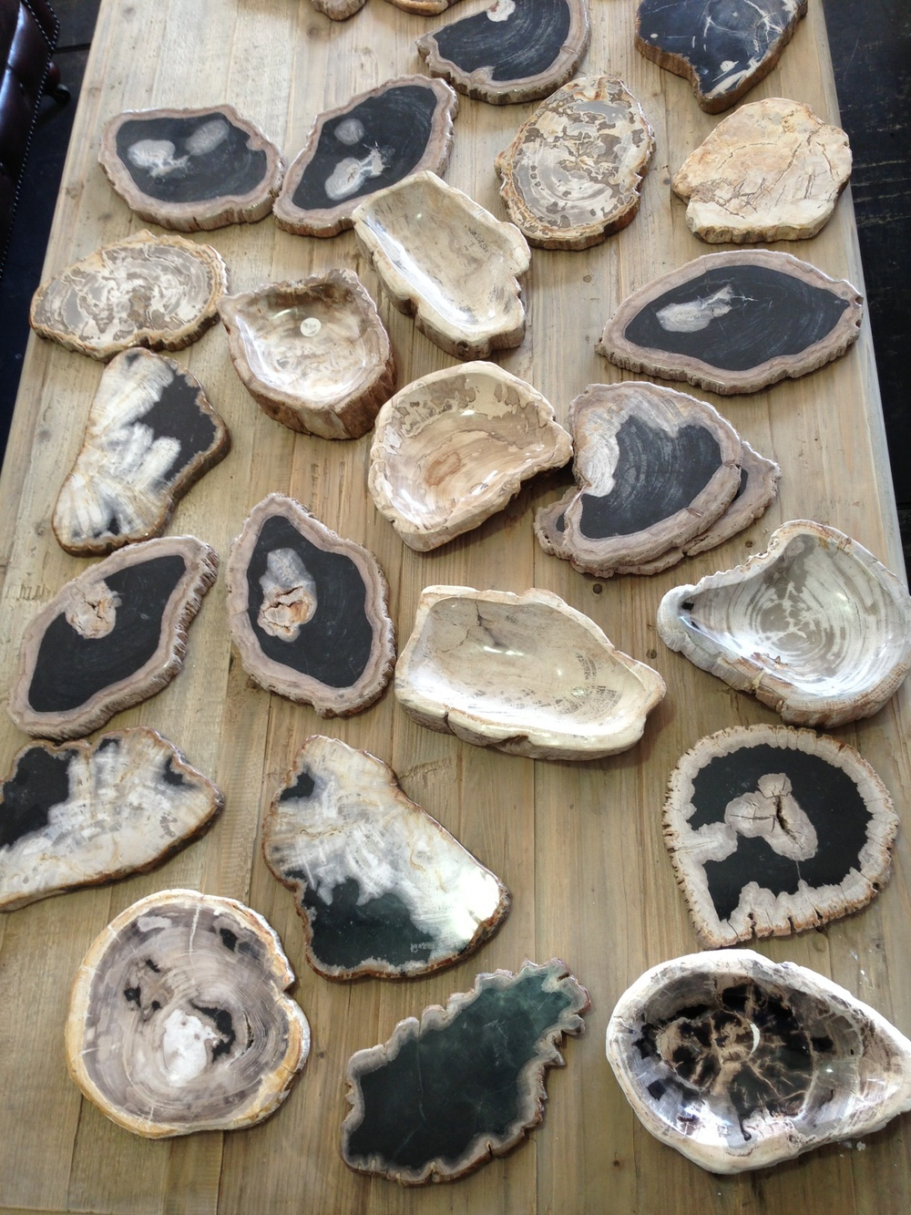 Antique furniture, decor;  petrified wood
