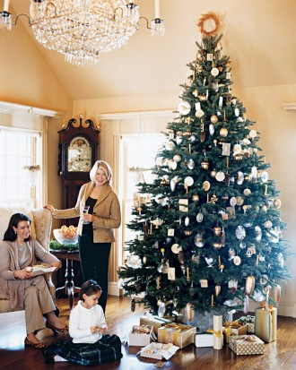 "MUST-KNOW  : Martha's Holiday Decorating Ideas    ➤  http://www.marthastewart.com/286763/marthas-holiday-decorating-ideas/@center/1009036/christmas-wreaths-garlands-and-more  | "" When it comes to decorating for Christmas, Martha always has lovely ideas and exquisite taste. If you need a few ideas to get your decorating finished up, you might check out some of her best.  "" 