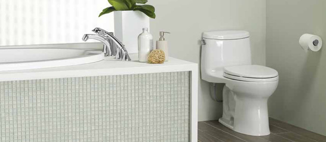Toto is a brand synonymous with quality design. My clients who have Toto products are always pleased with their superior design. Have you heard of their Double Cyclone flushing technology?