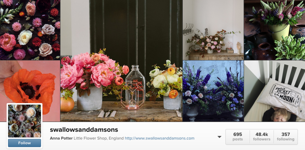 For flowers and all things floral, swallowsanddamsons is your source.