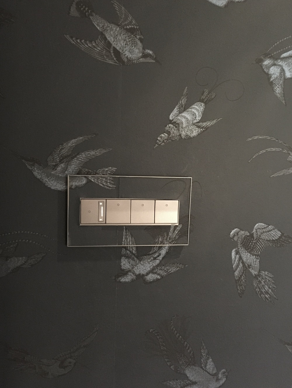 Legrand Adorne switch on wallpaper