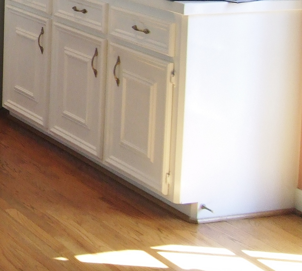 Superb Dated custom cabinetry These exposed hinges are cheap