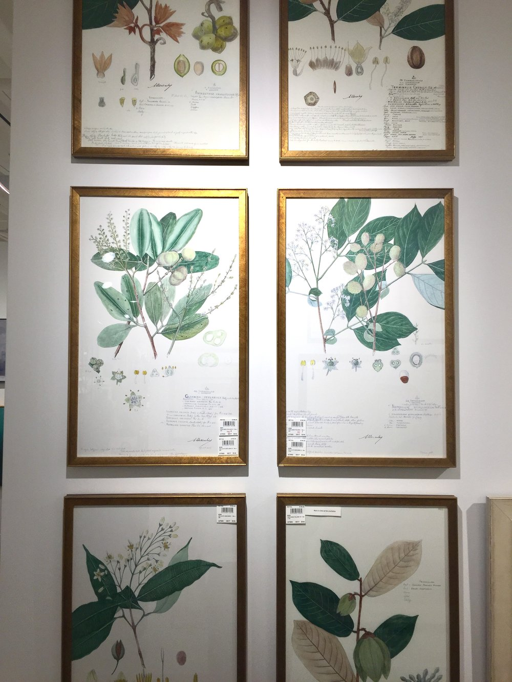 I want these botanicals for my bedroom. The greens are perfect.
