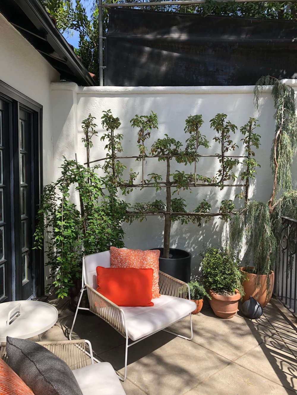 Guest house front porch with espalier tree, plants and lounge chair, Pasadena Showcase House, Designer: L2 Interiors #patio #frontporch #espalier #garden