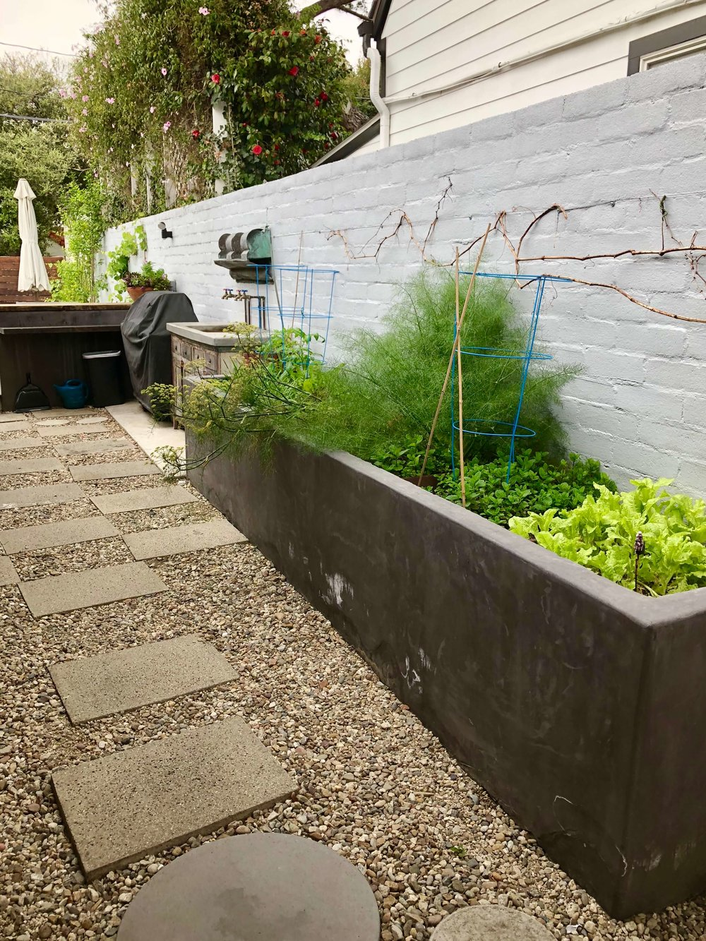 Raised bed vegetable garden with concrete planter in sideyard #vegetablegarden #herbgarden #sideyard