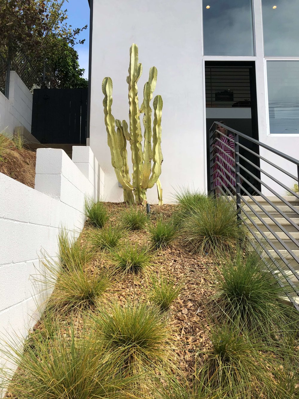 Front Entry with drought tolerant plants - California home tour, Architects: CHA:COL, Inc.