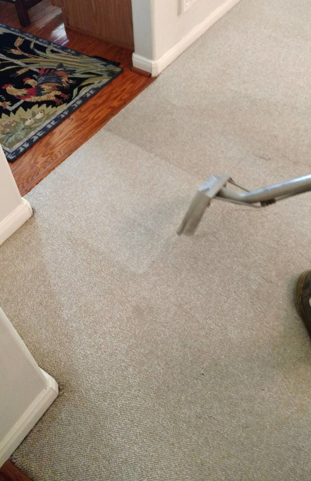 Steam cleaning can brighten up the carpet and help sell a house. #stagedtosell #homestaging #sellingahouse #stagingtosell #stagingideas