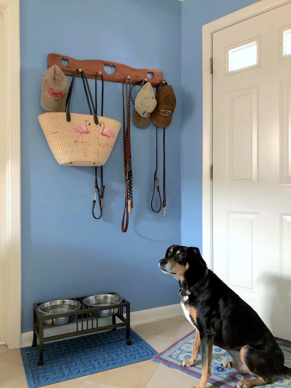 Handmade wood hat rack in periwinkle blue laundry room, dog bowls at the back door | Carla Aston, Designer