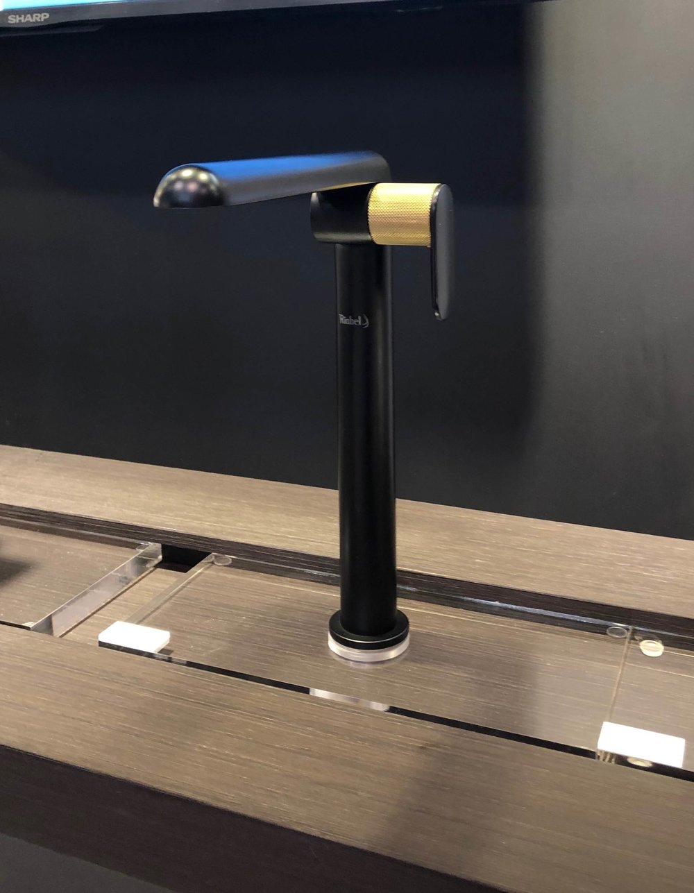 Black faucet with brass accent seen at Riobel | KBIS 2019