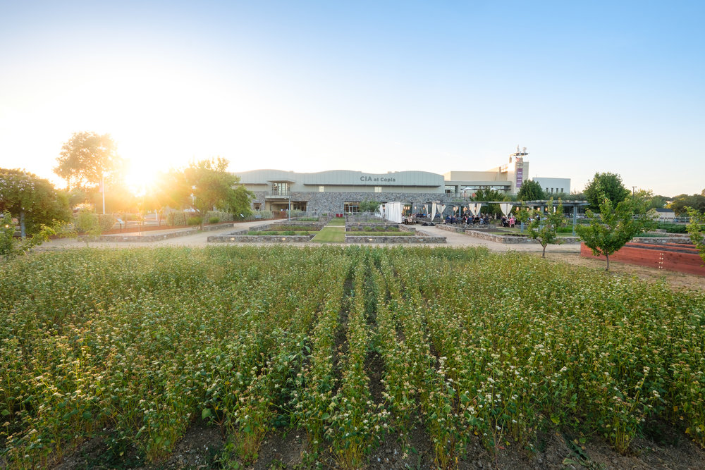 Can't wait to visit the Culinary Institute of America, Copia, when I visit Napa. #napa #culinary