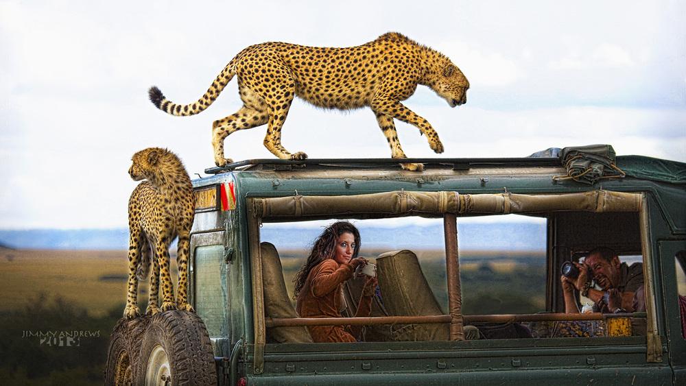 Jessica In Safari Jeep With Cheetah On Top-Widescreen.jpg