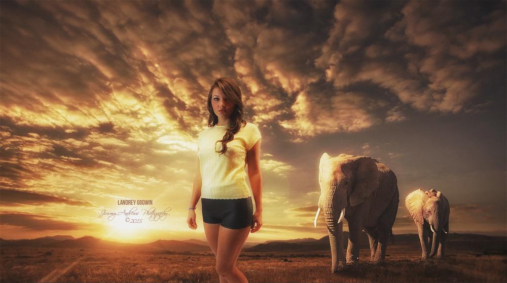 Landrey Godwin Walking With Elephants