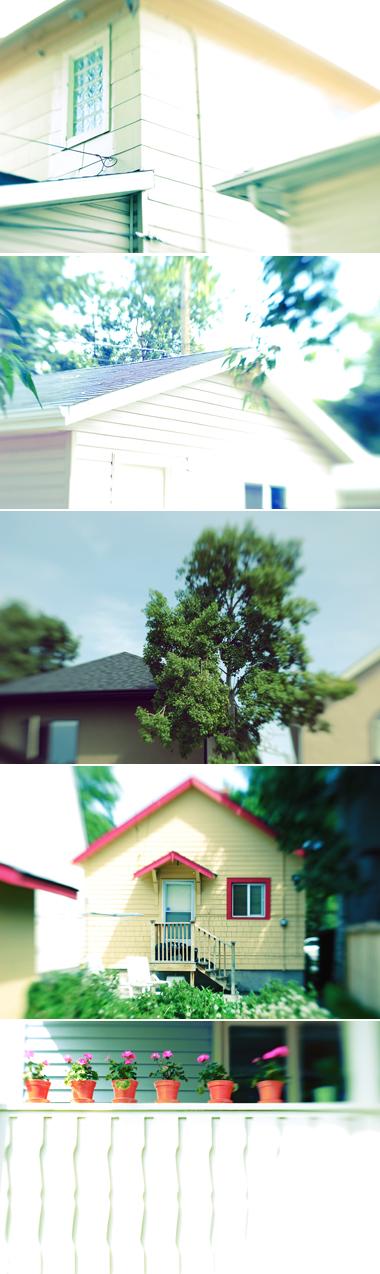 neighbourspic.jpg