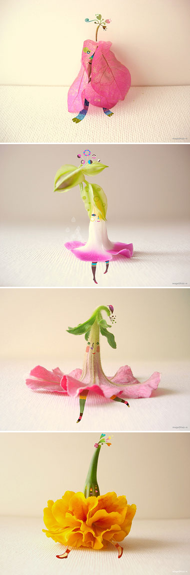 flowerrab.jpg