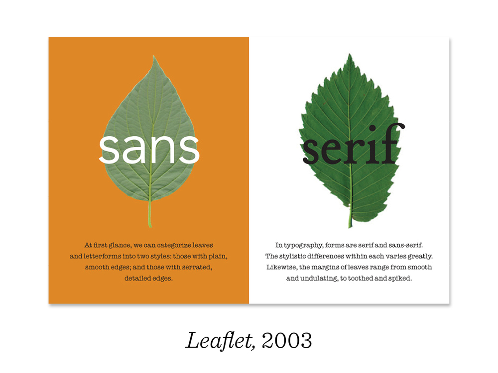 6) This lead to a study between leaves and letters, comparing the styles, weights and terminology of typography with those of the natural world. Here you can see the words sans and serif demonstrated on their leafy equivalents. I really enjoy the process of conceptualizing, writing, photographing and designing a complete project.