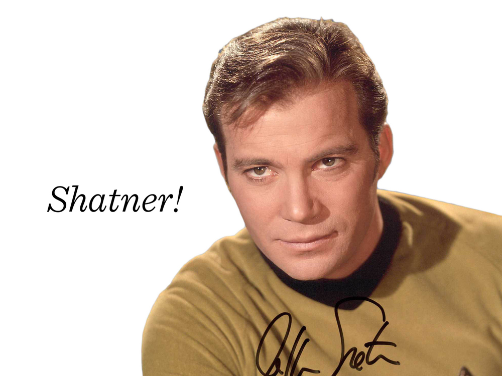 9) William Shatner. Perhaps an unexpected fellow to show up here! One summer, my husband Glen and I were driving across Canada to get to a wedding in Nova Scotia. We had the Ben Folds and William Shatner spoken word cd on repeat during the trip. Shatner got into my subconscious and I thought it would be fun to do a gallery show about him. A Canadian icon, he was going to turn 76 years old that year. 76 Shatners! I figured if I was going to have that many illustrations, the project should be made into a book!