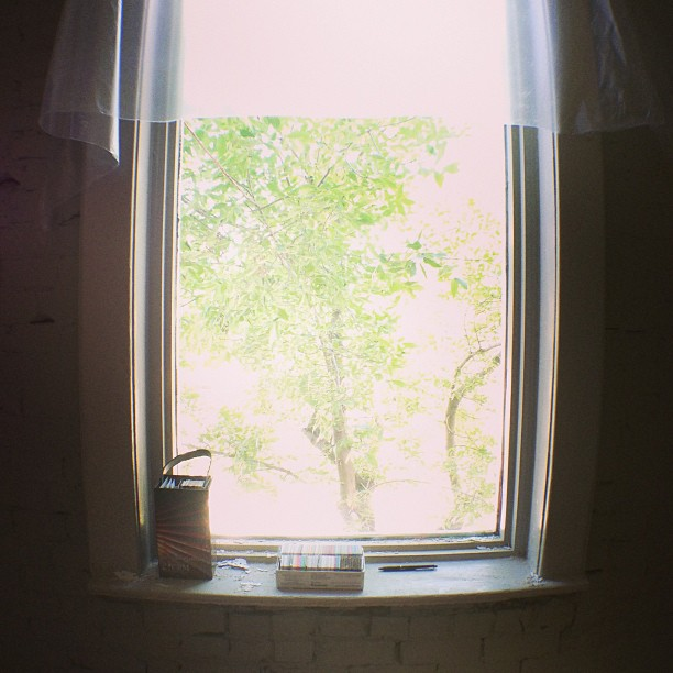 One of the seven windows overlooking a lovely tree, which will help cushion the view of the construction to happen in the adjacent lot.