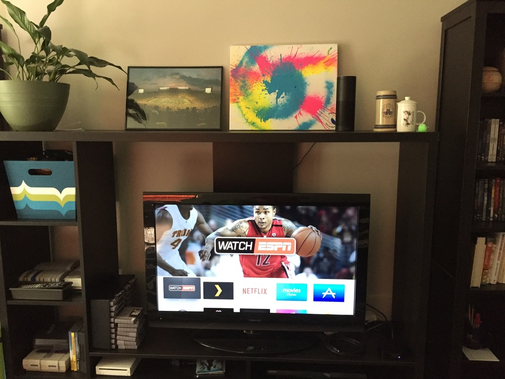 Clockwise: SNES, houseplant, Michigan Stadium, Blue Man Group, Echo, Apple TV.