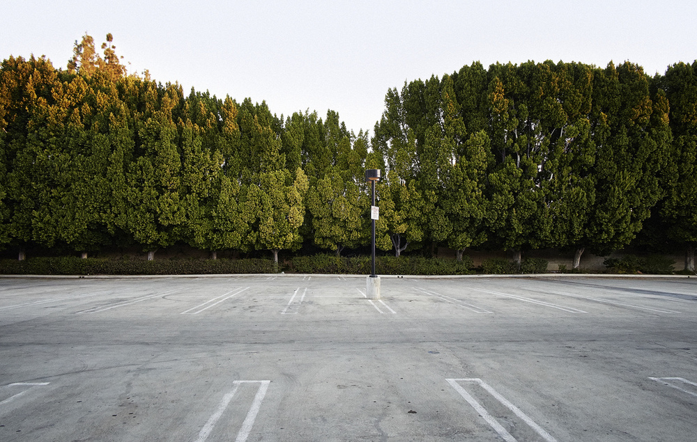 "Taken early morning in an empty parking lot near my home (perhaps an edition to my on-going series,  ""Parking"" )"