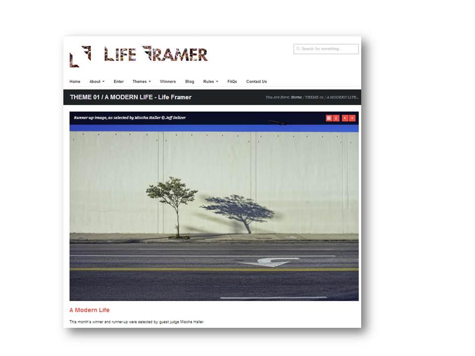 Life Framer.jpg