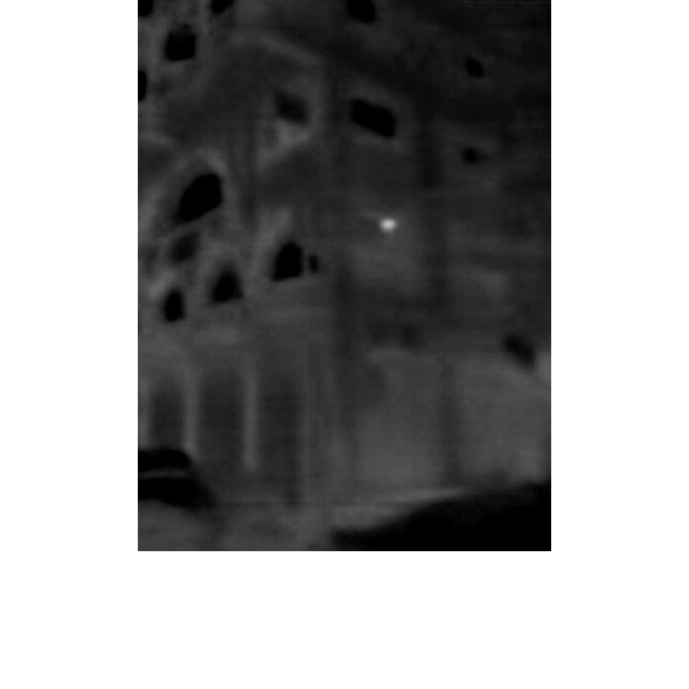 Infrared - 19.jpg