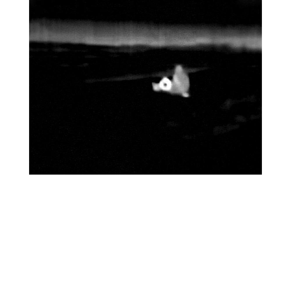 Infrared - 28.jpg