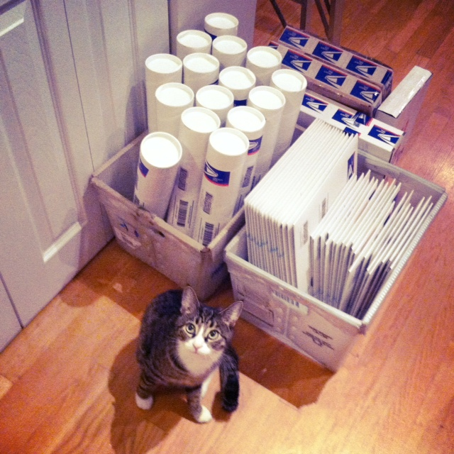 Order a print from my Etsy shop? Don't worry, it is safely protected by my well-trained guard kitten.