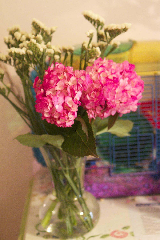 flowers for rosalea