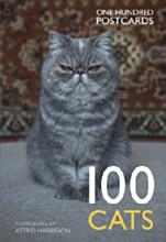 100 cats.jpg