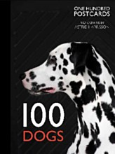 100 dogs.jpg