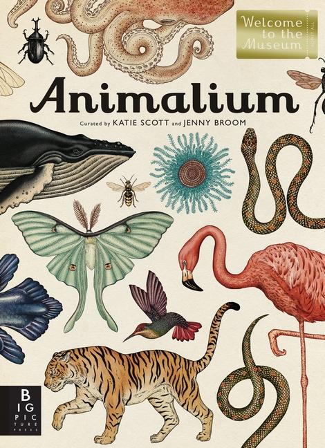 candlewick animalium.jpg