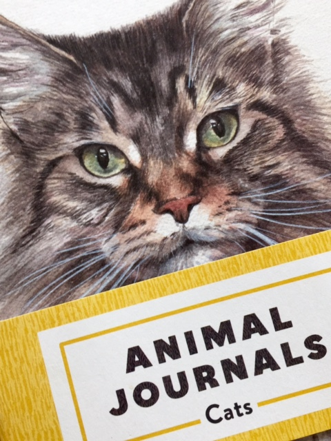 FullSizeRenderanimal journal 4.jpg