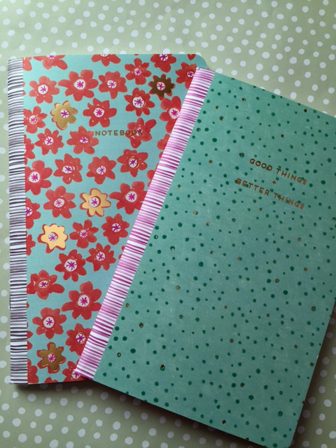 curly girl notebooks nov 16.jpg