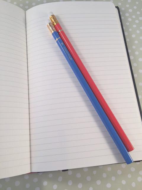 palomino journal and blue pencil 2.jpg