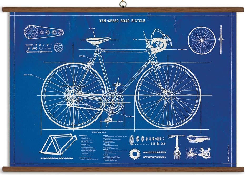 cavallini bike blue print.jpg
