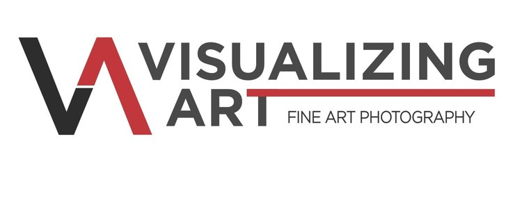 Visualizing Art and ER Portraiture