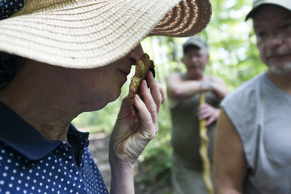 Dixie Bosworth smells a mushroom during the Alley Park Mushroom Hike Saturday in Lancaster, Ohio.