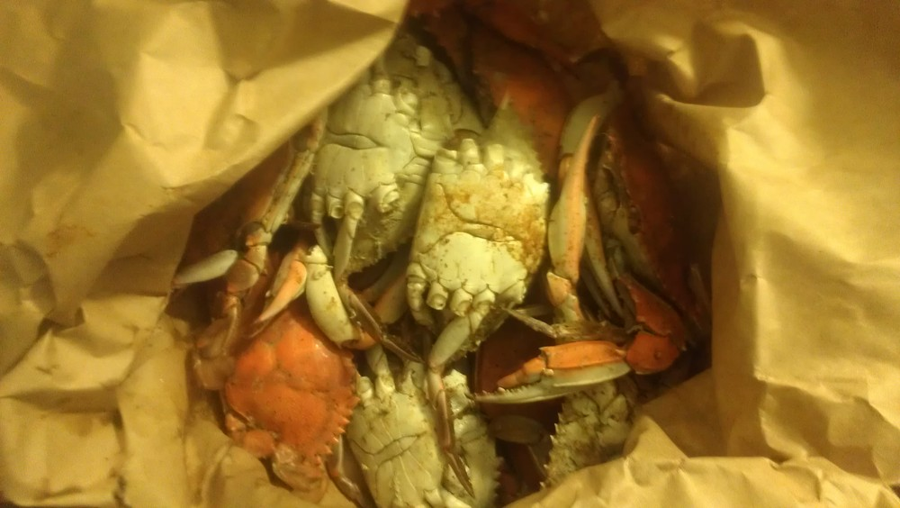 Decided to end the night over some Maryland Crab. You know its real MD crab too since its served in a paper bag.
