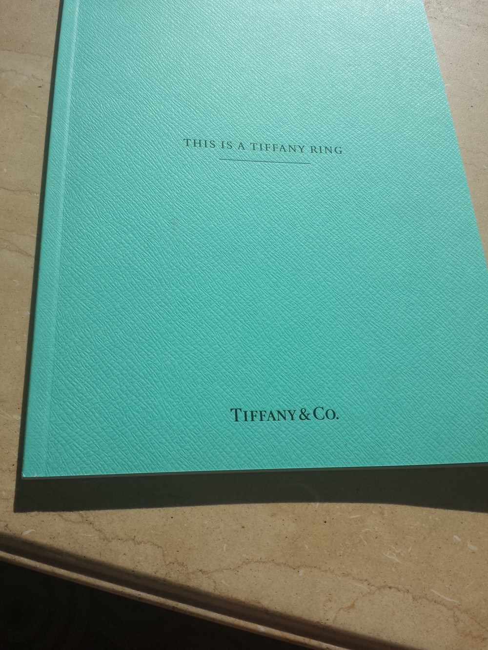 Visited Tiffany&Co on Rodeo, and tried on my dream ring. Those pics are under wraps, but they also randomly decided to let me have their booklet of all of their pieces, and even gave me a bag so I looked like I bought something from the store as I kept walking up and down the street. SWEET!