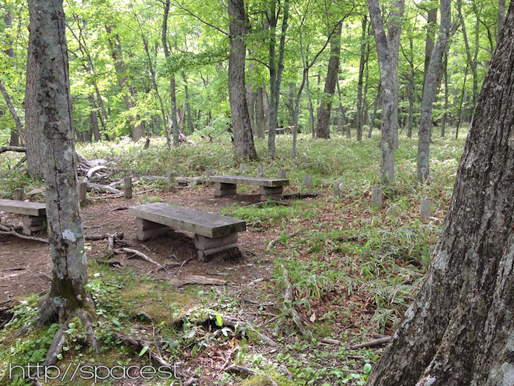 benches near the trail crossing