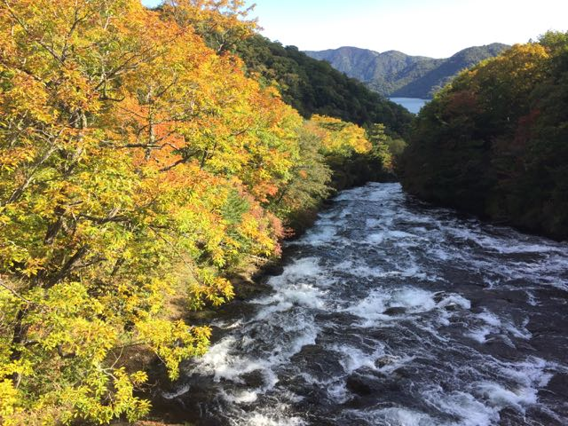 Ryuzu waterfall autumn leaves 2015