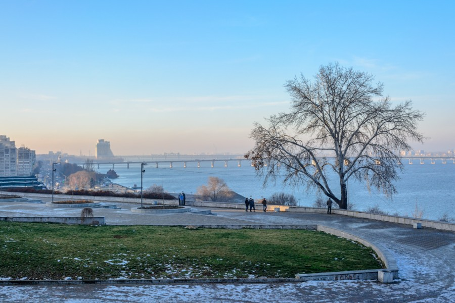A tree over the Dnipro river