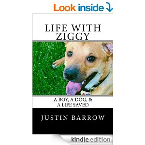 This is a great book to bring hope  if you are dealing with depression or suicidal thoughts. Justin shares his story with brutal honesty  on how he overcame his struggle with these issues.