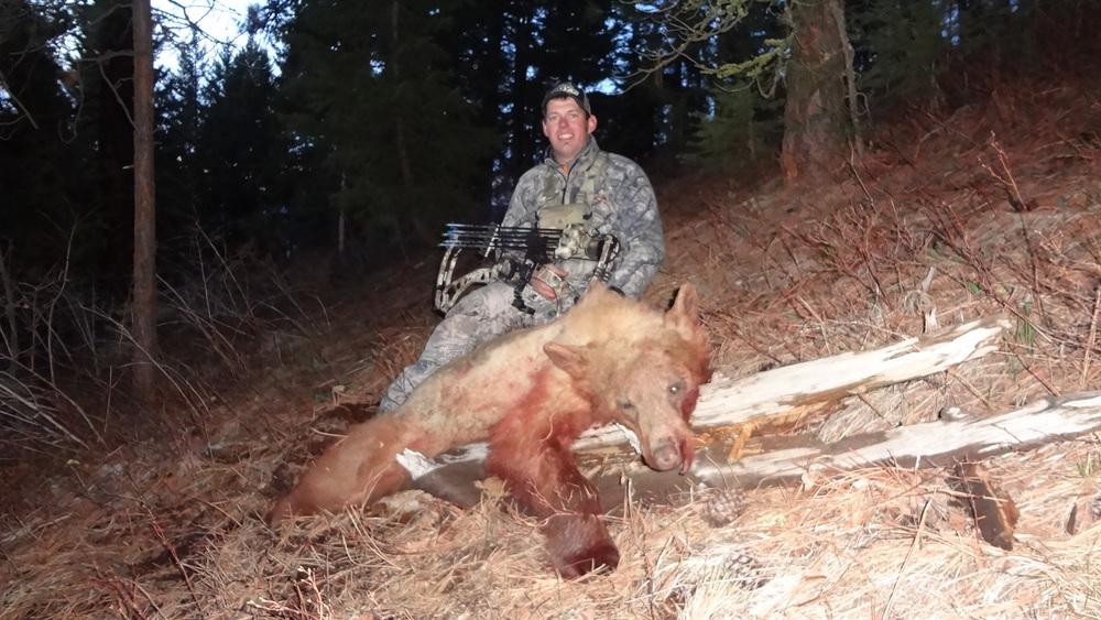bear 13 017.jpg