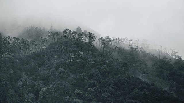 Mist on Mt. Misen   Miyajima, Japan  © Alan Wentworth
